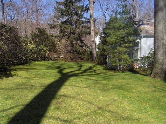 homestead 056.jpg