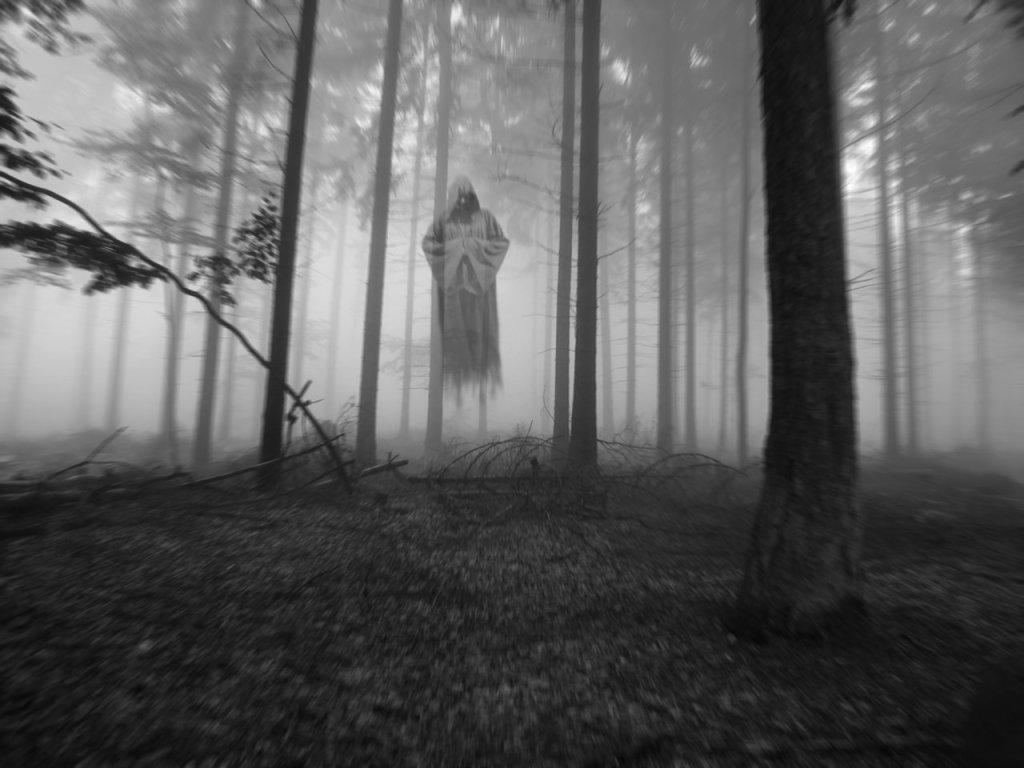 220766-apparition.jpg