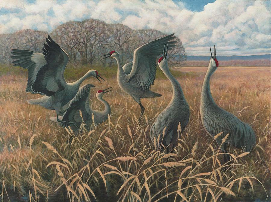 sandhill-cranes-dancing-jon-janosik